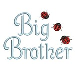 big Brother lettering machine embroidery with ladybugs from Neelde Passion Embroidery