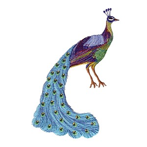 peacock bird machine embroidery design for variegated thread multicoloured thread multicolored machine embroidery thread stitched with variegated thread from needlepassion needle passion embroidery npe